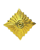 NVA officer star shoulder board, gold